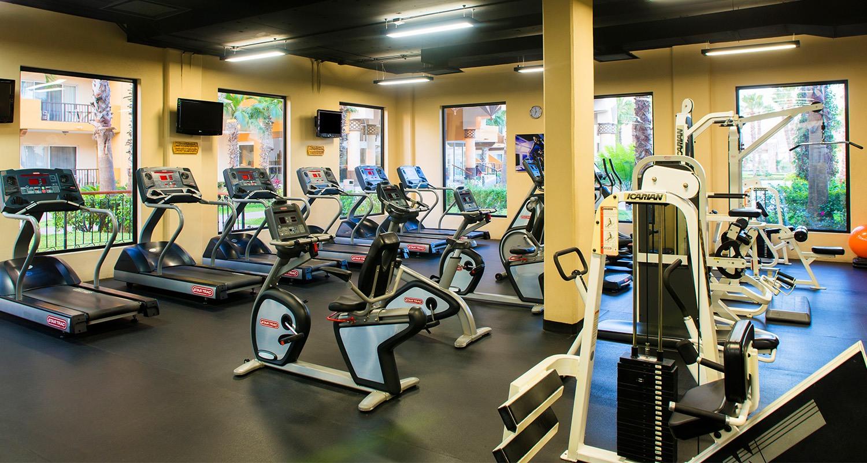 Villa Del Palmar Cabo San Lucas Gym
