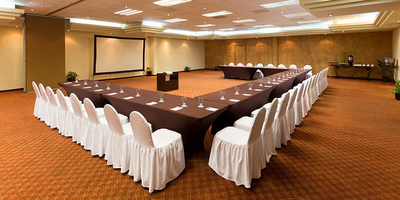 Meeting Facilities And Services Villa Del Palmar Cabo San Lucas